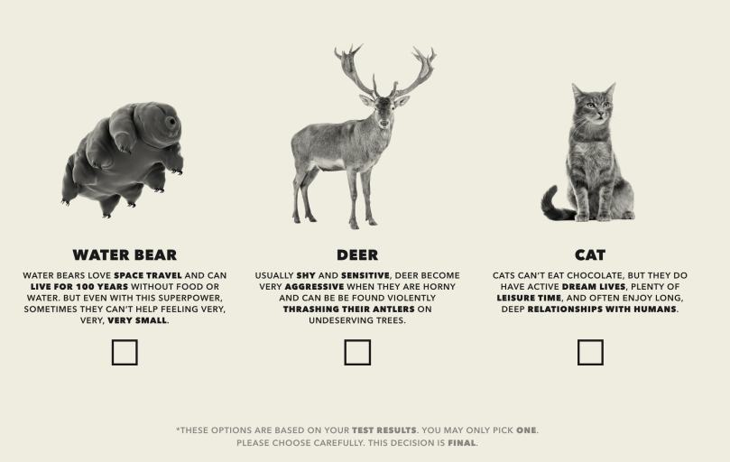 I am already a cat, but I mean a water bear and a deer are great backup choices.